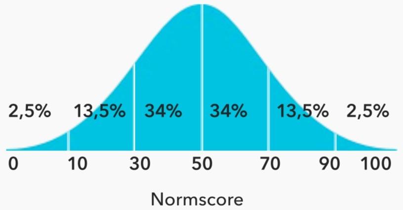 voorbeeld-e-assessment-rapport-4